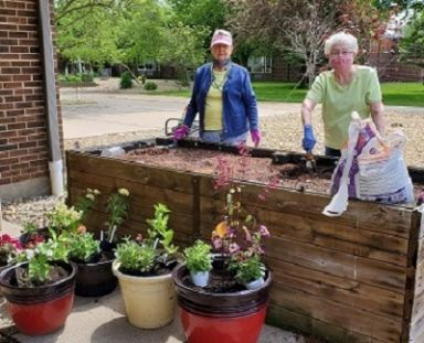 LP ladies planting flowers May 2020 cropped